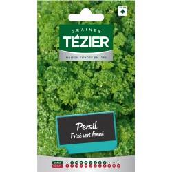 Tezier - Persil frisé vert foncé