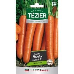 Tezier - Carotte Nandor HF1