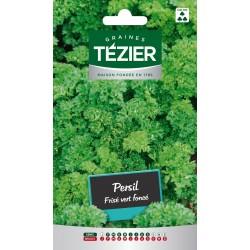 Tezier - Persil frisé vert foncé Fort Grammage