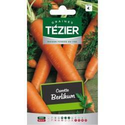 Tezier - Carotte Berlikum