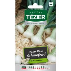 Tezier - Oignon blanc de Vaugirard