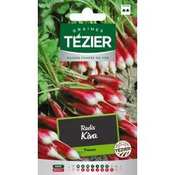Tezier - Radis Kiva