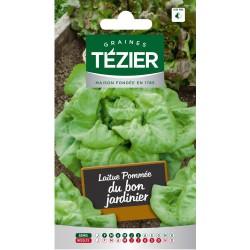 Tezier - Laitue Pommée Du bon jardinier (G,B,)