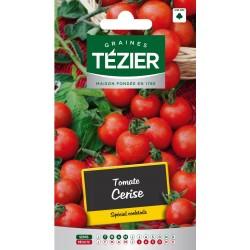 Tezier - Tomate Cerise