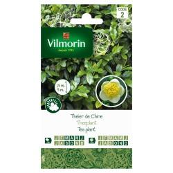 Vilmorin - Theier