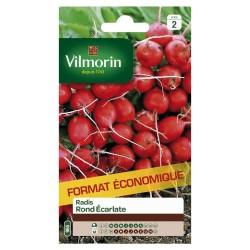Vilmorin - Radis Rond Ecarlate GM