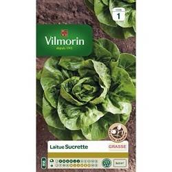 Vilmorin - Laitue sucrine (type sucrette)
