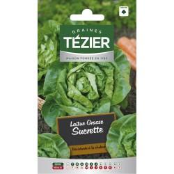 Tezier - Laitue Grasse Sucrette (remplace Sucrine)