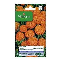 Vilmorin - Rose d'Inde Spun Orange