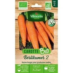 Vilmorin - Carotte Berlikum 2 BIO  Daucus carota