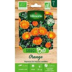 Vilmorin - Souci Bio Orange