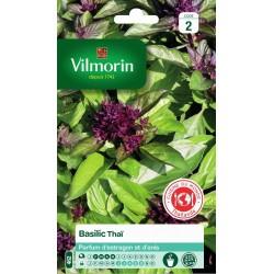 Vilmorin - Basilic Thai Vl 2 462
