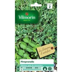 Vilmorin - Pimprenelle Vl 2 491