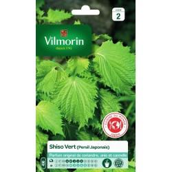 Vilmorin - Shiso Vert (persil Japonais)
