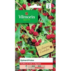 Vilmorin - Epinard Fraise