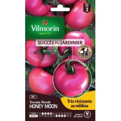 Vilmorin - Tomate Honey Moon Hf1 - SDJ