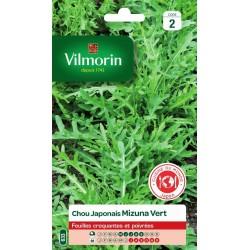 Vilmorin - Chou Japonais Mizuna Vert
