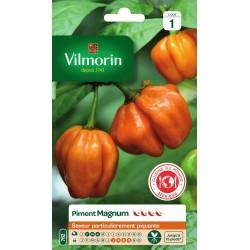 Vilmorin - Piment Magnum Orange Cuisine du Monde