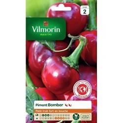 Vilmorin - Piment Bomber