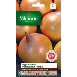 Vilmorin - Oignon jaune Valenciana Tardia (tardif) - CM