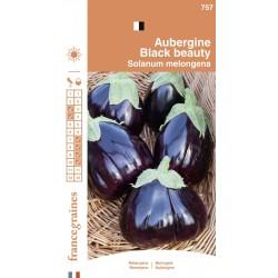 France Graines - Aubergine Black Beauty