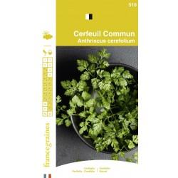 France Graines - Cerfeuil Commun