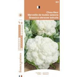 France Graines - Chou fleur Merveille 4 Saisons