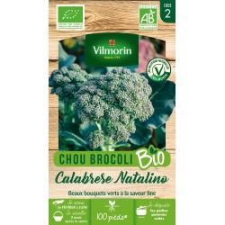 Vilmorin - Chou Brocoli Calabraise Bio