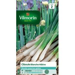 Vilmorin - Ciboule Blanche Hative