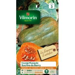 Vilmorin - Courge Sucrine Du Berry