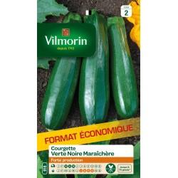 Vilmorin - courgette verte noire maraichère format éco