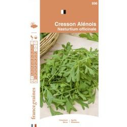 France Graines - Cresson Alenois