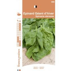 France Graines - Epinard Géant D'Hiver