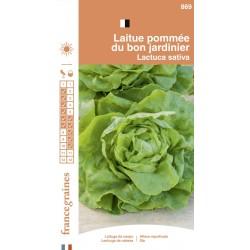 France Graines - Laitue Pommée Bon Jardinnier