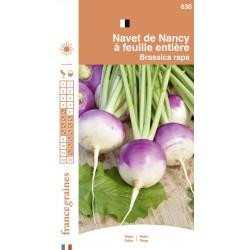 France Graines - Navet de Nancy