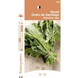 France Graines - Navet Grelos Santiago