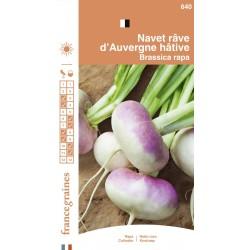 France Graines - Navet Rave Auvergne Hatif