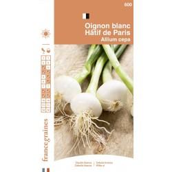 France Graines - Oignon Blanc Hatif de Paris