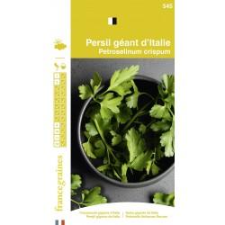 France Graines - Persil Géant Italie