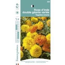 France Graines - Rose d'Inde Double Grande Mix