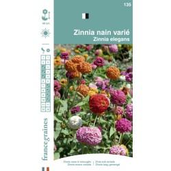 France Graines - Zinnia Nain Varié