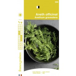 France Graines - Aneth Officinale