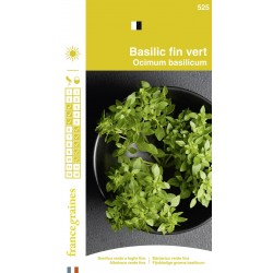 France Graines - Basilic Fin vert