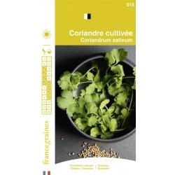 France Graines - Coriandre Cultivée