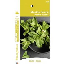 France Graines - Menthe Douce
