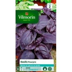 Vilmorin - Basilic pourpre