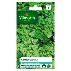 Vilmorin - Cerfeuil Commun, Vert