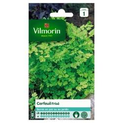 Vilmorin - Cerfeuil Frise Serie 1