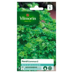 Vilmorin - Persil Commun 2 officinal