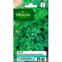 Vilmorin - Persil commun géant d'Italie